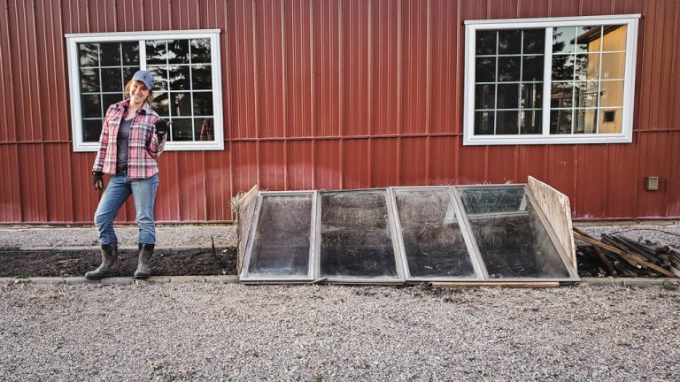 Super Simple Cold Frames