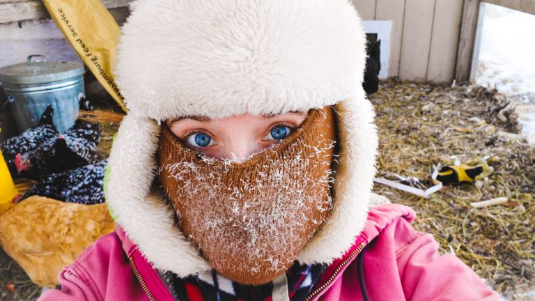 Caring for Chickens in Extreme Cold